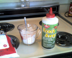 boric acid roaches killer