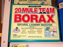 borax to kill roaches